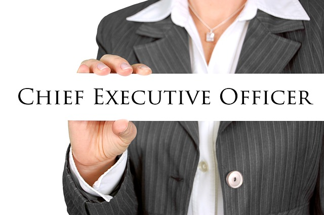 image of CEO - collegecliffs.com