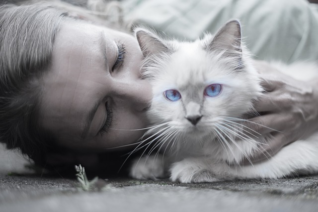cat and pet owner - animal lovers college degrees