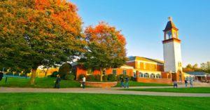 Quinnipiac University - job placement