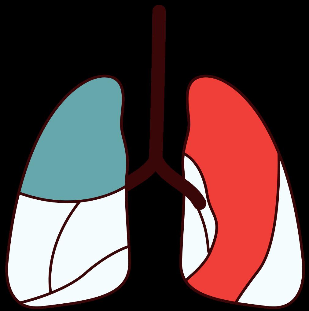 Respiratory Therapist - Divider