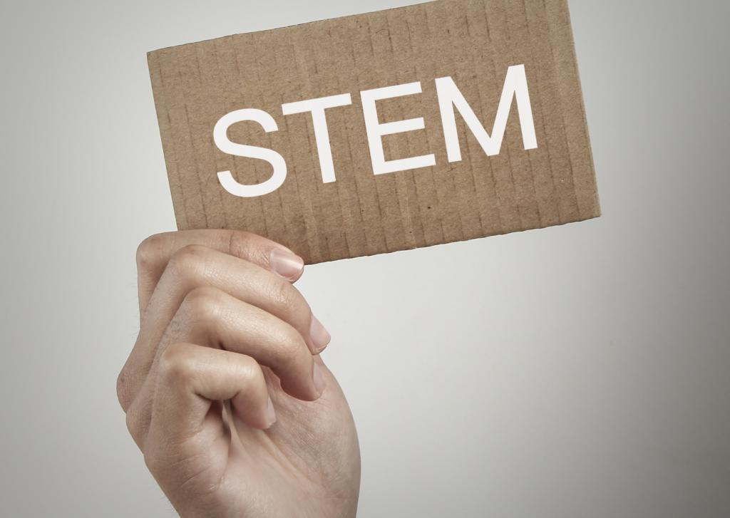 STEM concept 2