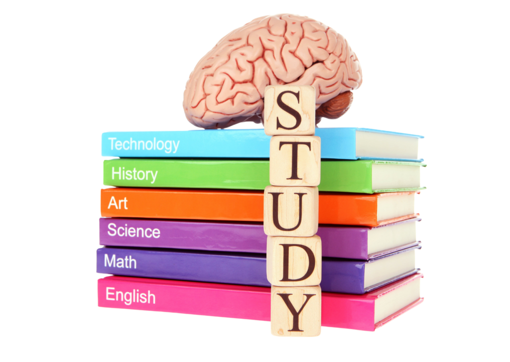 studying - concept