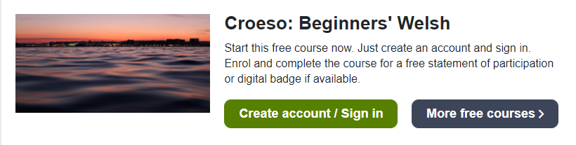11 - 12 Free Online College Classes for Foreign Language